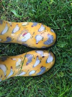 chicken boots